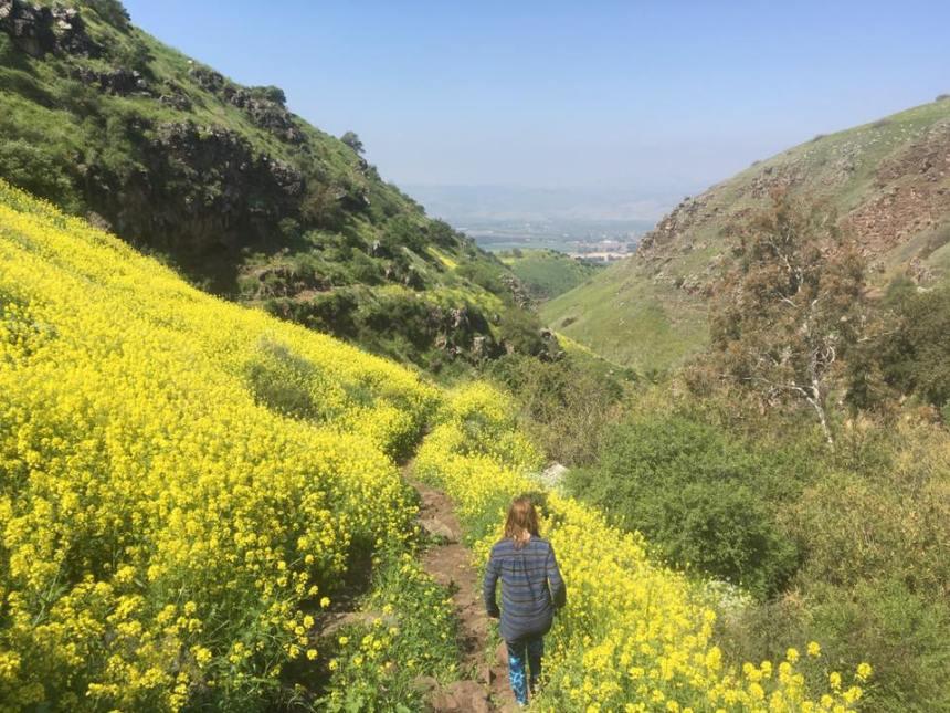 golan heights walk