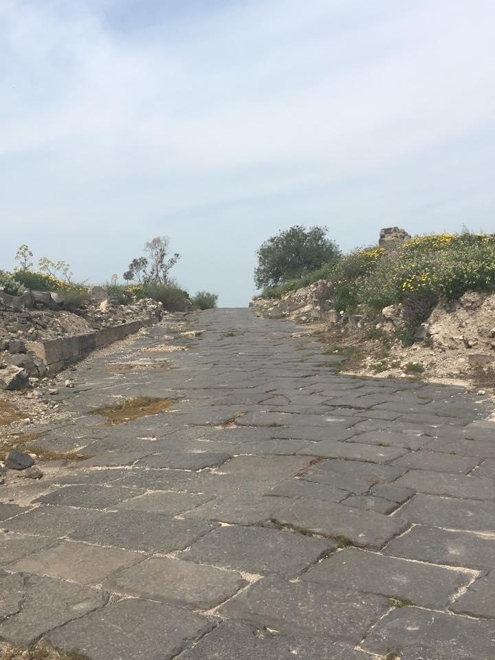 roman road sussita
